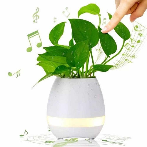 caixa de som - Vaso de planta personalizado